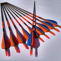 Children arrows of mixed colors